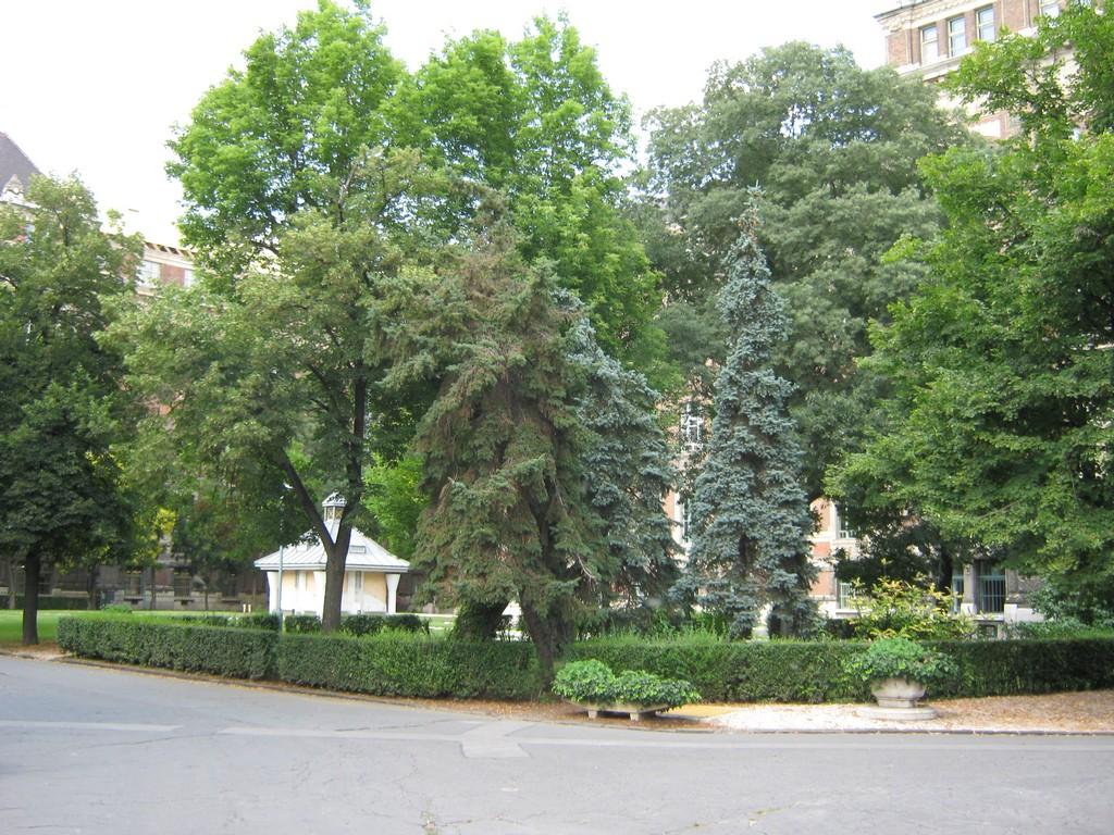 Műegyetem parkja