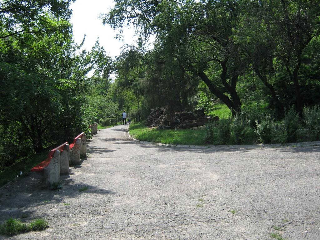 sétaút a Gellérthegyre