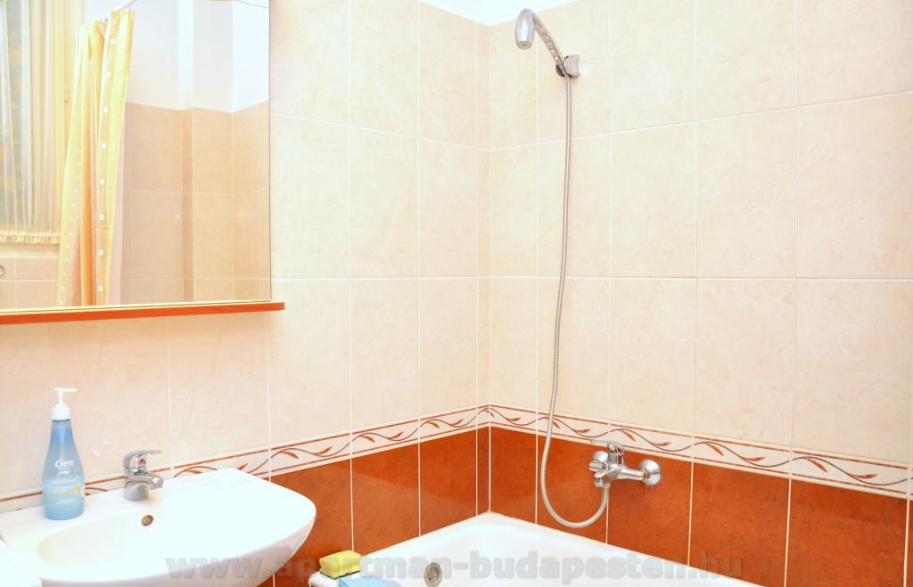 Kád zuhanyzóval, mosdó, wc egyben. A lakásban van egy külön wc is!